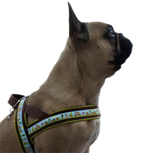 Norwegengeschirr Hundegeschirr selber nähen Anleitung Ebook farbenmix